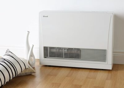 Rinnai Space Heaters (2)